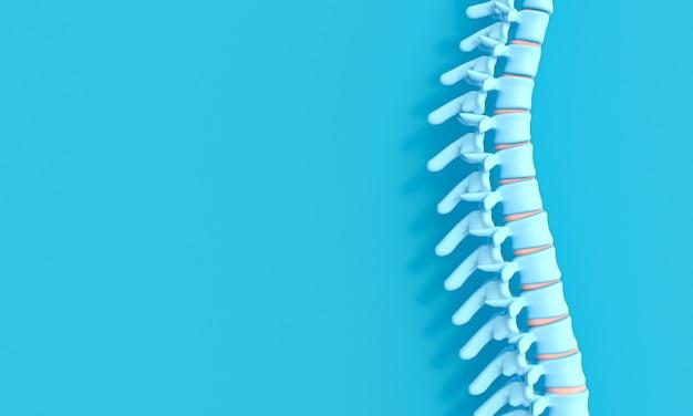 Image de rendu 3d d'une colonne vertébrale sur un fond bleu.