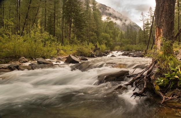 Une image à vitesse d'obturation lente d'une rivière de montagne lisse
