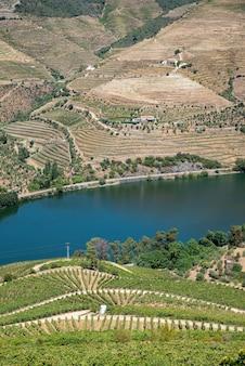 Immense extension de vignobles sur le fleuve douro