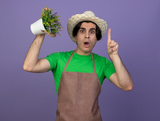 Impressionné jeune homme jardinier en uniforme portant chapeau de jardinage tenant une fleur en pot de fleurs à des points isolés sur violet