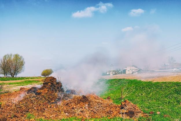 Incinération des ordures