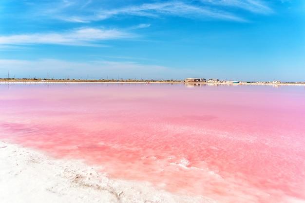 Incroyable lac salé rose en crimée un beau paysage désert d'un lac rose et d'un ciel bleu