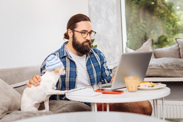 Indépendant barbu aux cheveux noirs travaillant sur son ordinateur portable à la maison assis près de chien