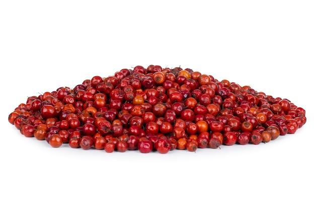 Indian fruit red berry sur mur blanc