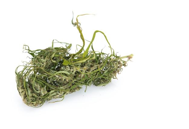 Indica prescription et fleur de marijuana médicale récréative