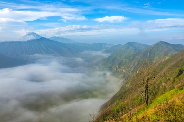 Indonésie. île de java. matin dans le parc national de bromo tengger semeru. brouillard dense dans la vallée entre les volcans