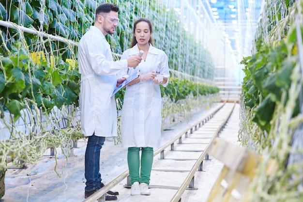 Ingénieurs agricoles travaillant dans les plantations