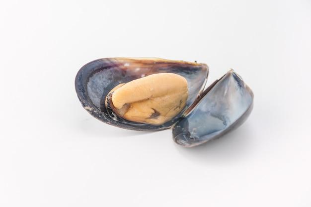 Ingrédient bivalve invertébrés aux moules traditionnels