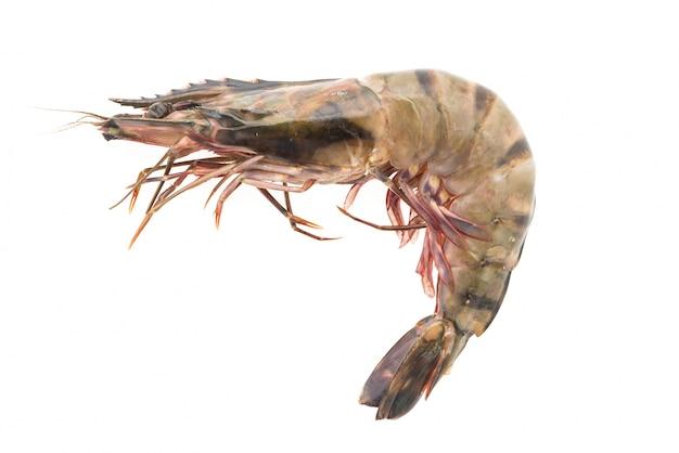 Ingrédient crevettes savoureux tigre ferme