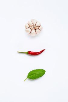 Ingrédients herbes et épices, basilic sacré, chili et ail blanc