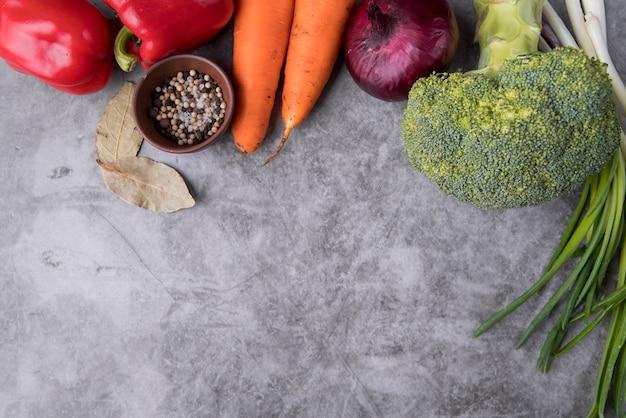 Ingrédients plats pour l'espace de copie de soupe