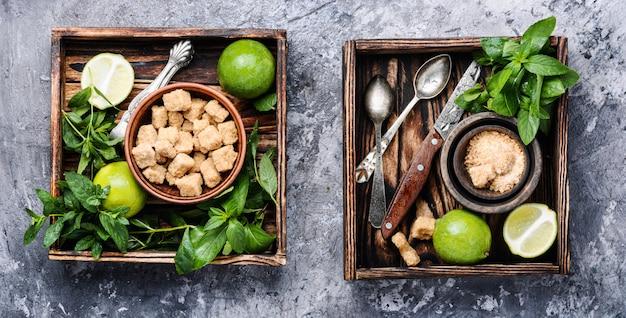 Ingrédients pour mojito