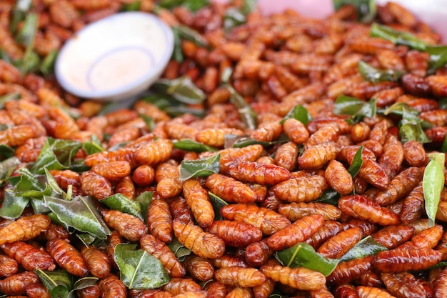 Insecte frit à street food