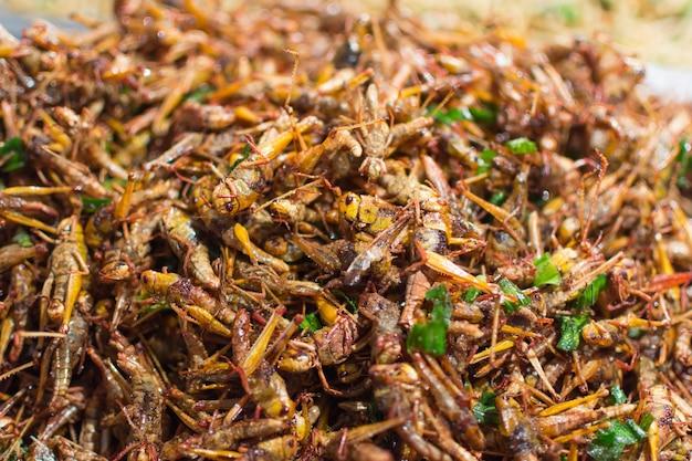 Insectes frits différents types est la nourriture est facile à trouver dans le marché des aliments de rue thaïlandais