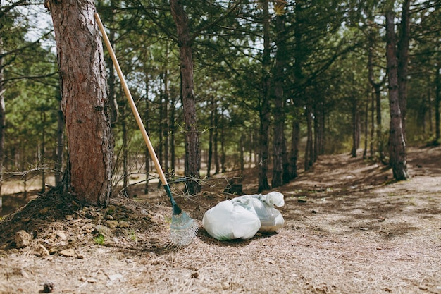 Instruments râteau pour la collecte des ordures, sacs poubelles parmi les buissons et les arbres dans un parc ou une forêt. nettoyer les ordures. problème de pollution de l'environnement