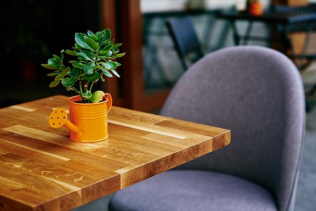 Intérieur de café de rue avec plante sur table