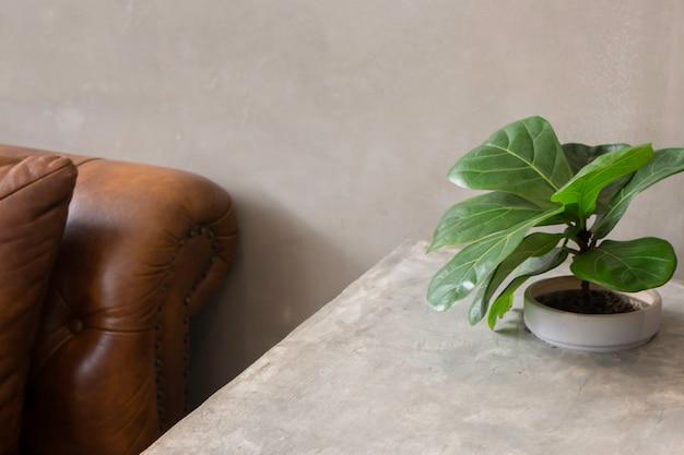 Intérieur confortable de l'espace de coworking avec plante verte