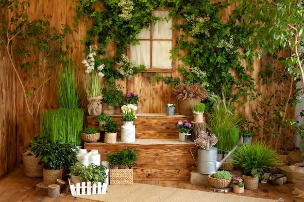 L'intérieur de la cour de printemps. patio d'une maison en bois avec des plantes vertes en pots. jardinage sur marches de maison. terrasse rustique. véranda de maison de campagne en décoration de printemps. pâques. cultiver des plantes en pot.