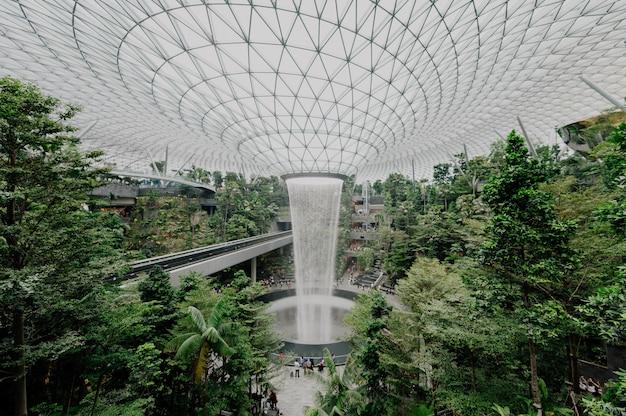 Intérieur d'un jardin botanique avec des plantes et de l'eau