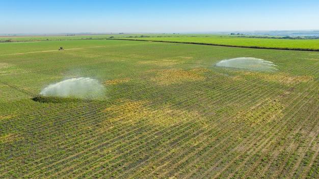 Irrigation d'une plantation de canne à sucre