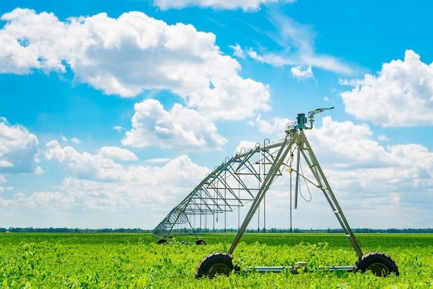 Irrigation des terres agricoles pour assurer la qualité de la récolte. journée ensoleillée, soleil.