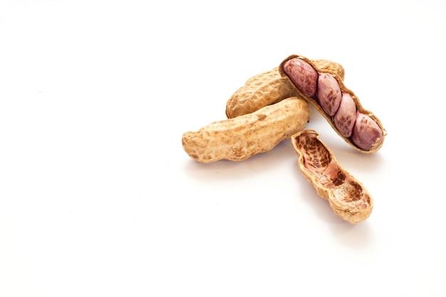 Isolé de cacahuète sur fond blanc