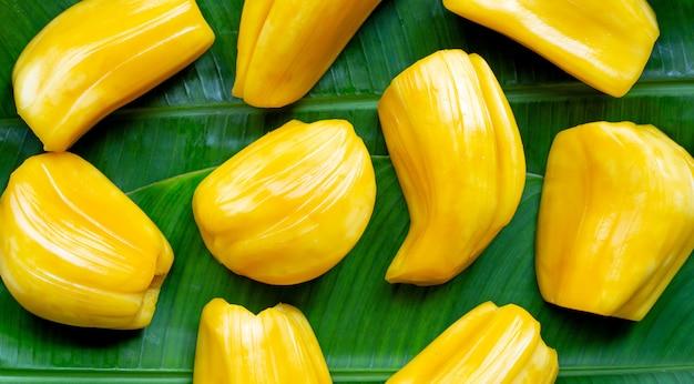 Jacquier mûr sur feuille de bananier.