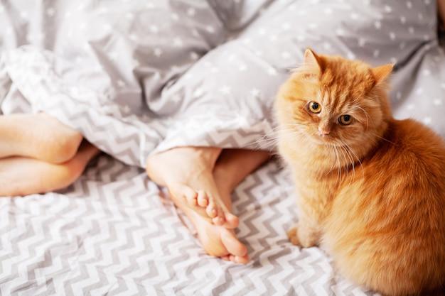 Jambes d'amoureux sous couverture. couple heureux s'amuser au lit.