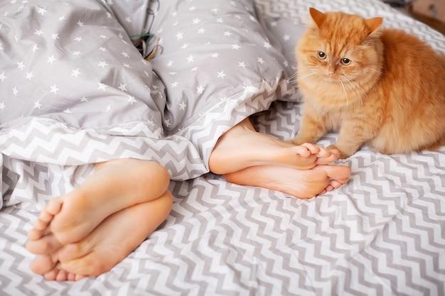 Jambes d'amoureux sous couverture. heureux couple s'amusant au lit.