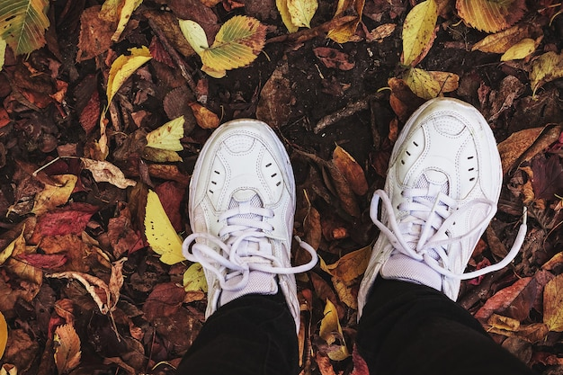 Jambes en pantalon noir et baskets blanches sur les feuilles d'automne.