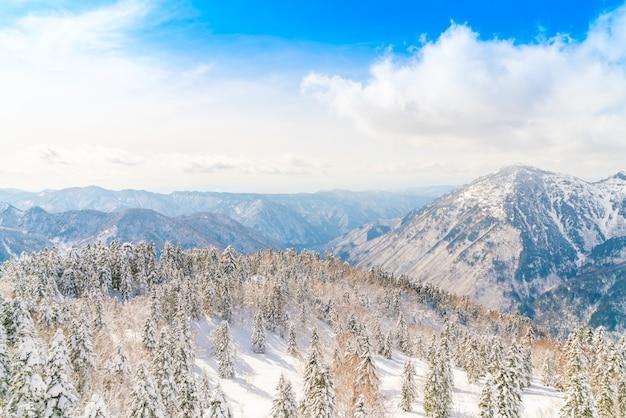 Japon hiver montagne avec la neige a couvert