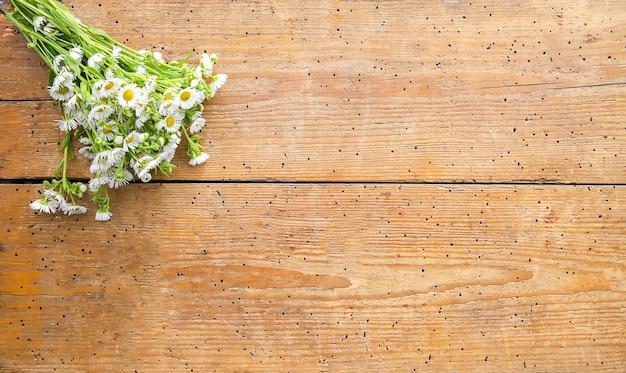 Jardin blanc petites fleurs de camomille sur fond en bois. bouquet simple sur la texture de vieilles planches.