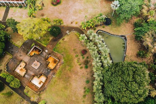 Jardin botanique sur l'île paradisiaque de maurice. ile maurice dans l'océan indien
