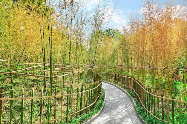 Jardin chinois typique, parc aux rochers bizarres. pékin.