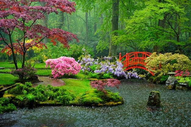 Jardin japonais, park clingendael, la haye, pays-bas