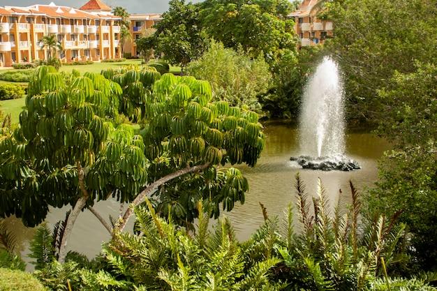 Jardin de luxe dominicain dans un hôtel de luxe à bayahibe