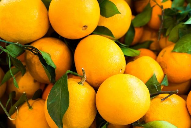 Jardin d'orange
