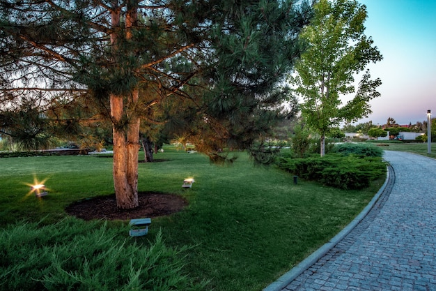 Jardin paysager d'un domaine avec des arbres, des buissons de genévrier, un éclairage et un chemin pavé