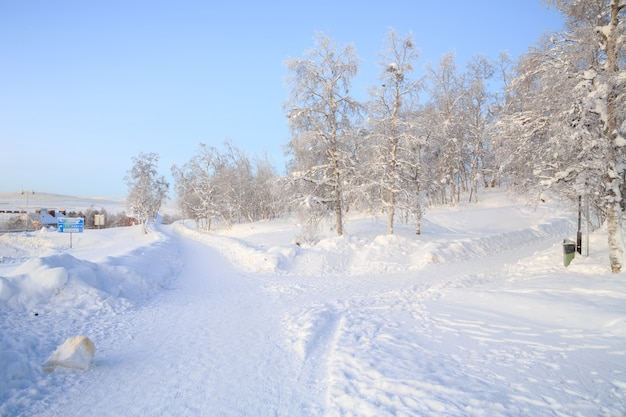 Jardin paysager d'hiver