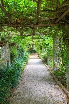 Jardin avec structure pergola aux couleurs vives en fin d'été. cette architecture et ce design ont été inspirés par la nature.