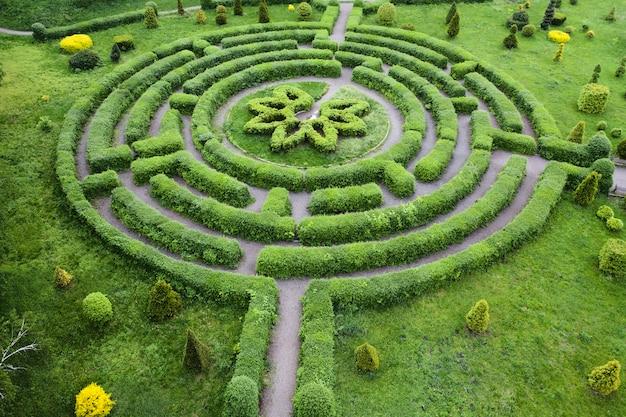 Jardin topiaire en forme de labyrinthe, dans le jardin botanique grishka à kiev.