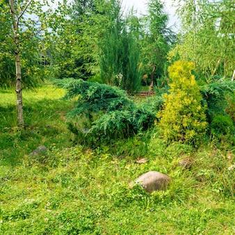 Jardin verdoyant dans le parc avec herbe, fleurs et arbres