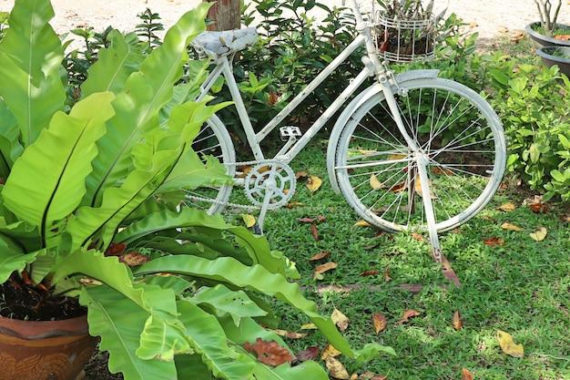 Jardin vintage de décoration de vélos