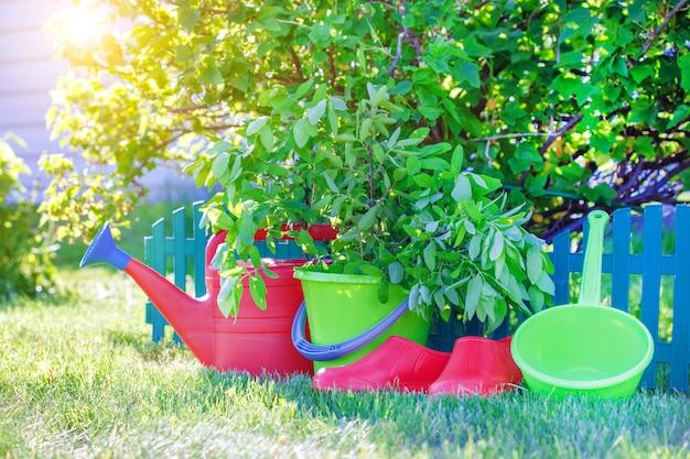 Jardinage. ensemble d'outils pour jardinier.