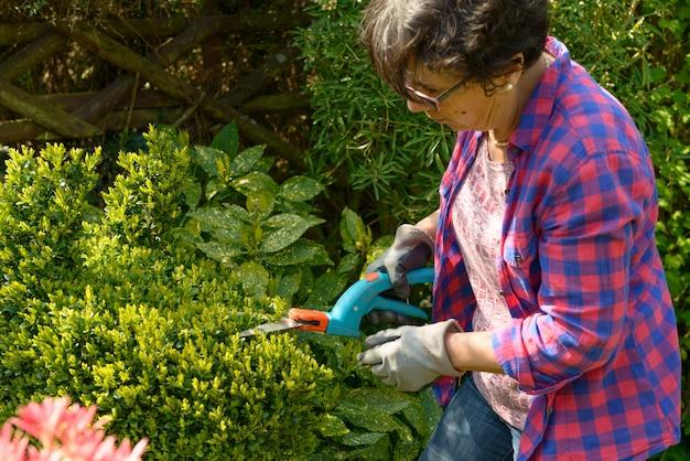 Jardinage de femme dans son beau jardin.