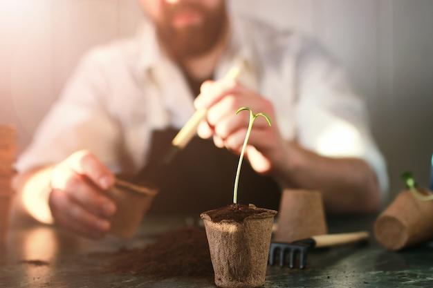Jardinage à la maison table de germes à la main