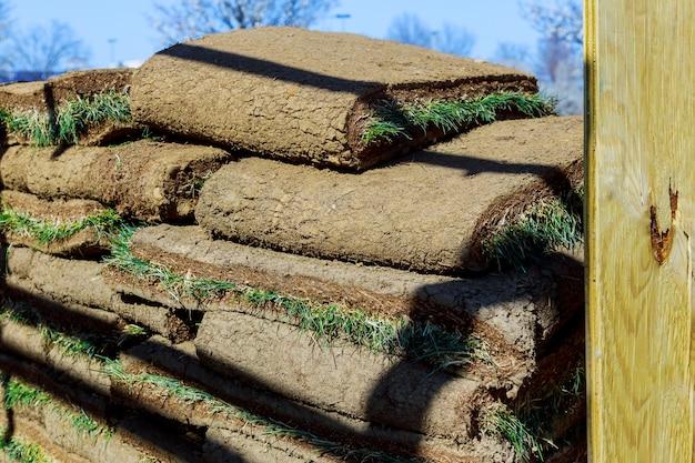 Jardinier appliquant des rouleaux de gazon dans les rouleaux d'herbe de la cour prêts à être installés