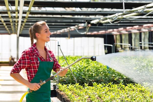 Jardinier commercial féminin arrosant des plantes