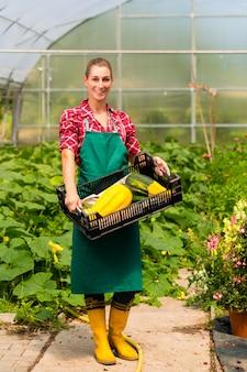 Jardinier femelle dans un jardin potager ou une pépinière