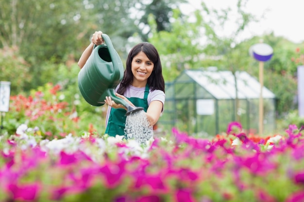 Jardinier gai, arrosage des plantes